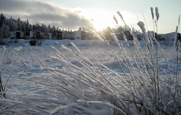 北欧住宅冬