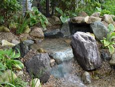 小川の流れるお庭を造ってビオトープのある生活