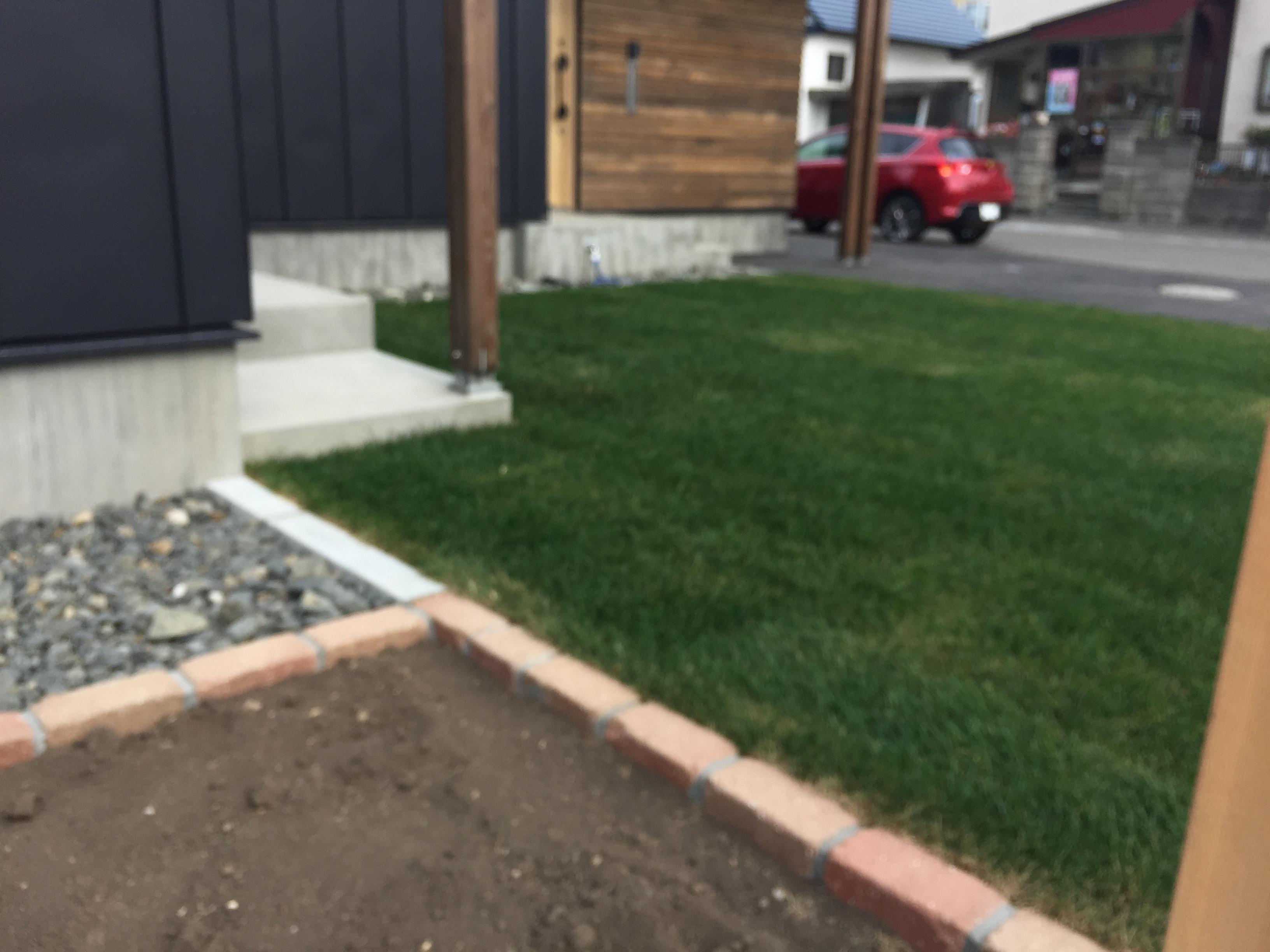 芝生の施工例写真