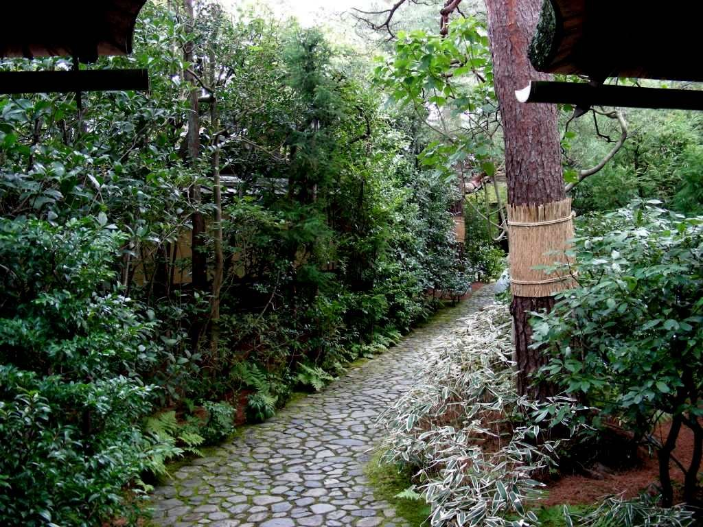 不審庵のお庭、この先には茶室があります。